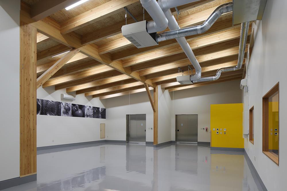 構造用合板表しの選果室